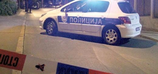 Policija uvidjaj 2