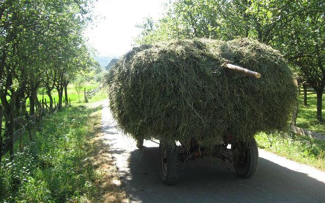 Podsticaj traktori 2