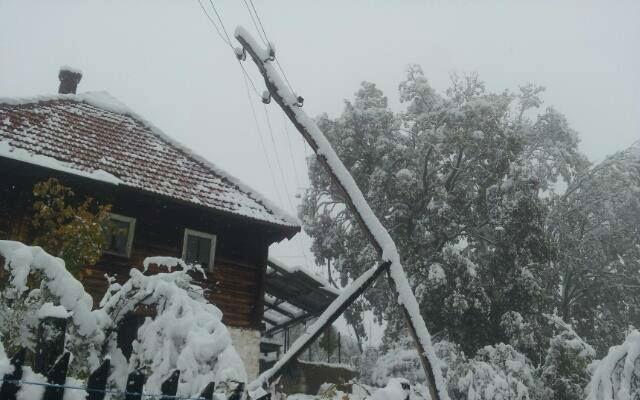 Zlatibor sneg 2