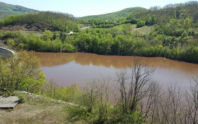 Jezero Vrutci alge 2